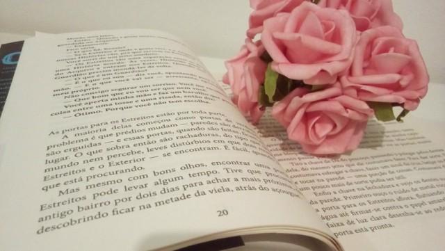 A-Guardiã-de-Histórias-Minha-Vida-Literaria2