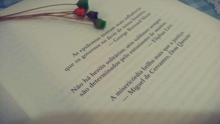 flor-da-pele-minha-vida-literaria2
