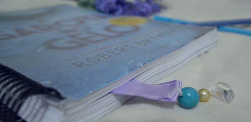 a-garota-no-gelo-robert-bryndza-minha-vida-literaria2